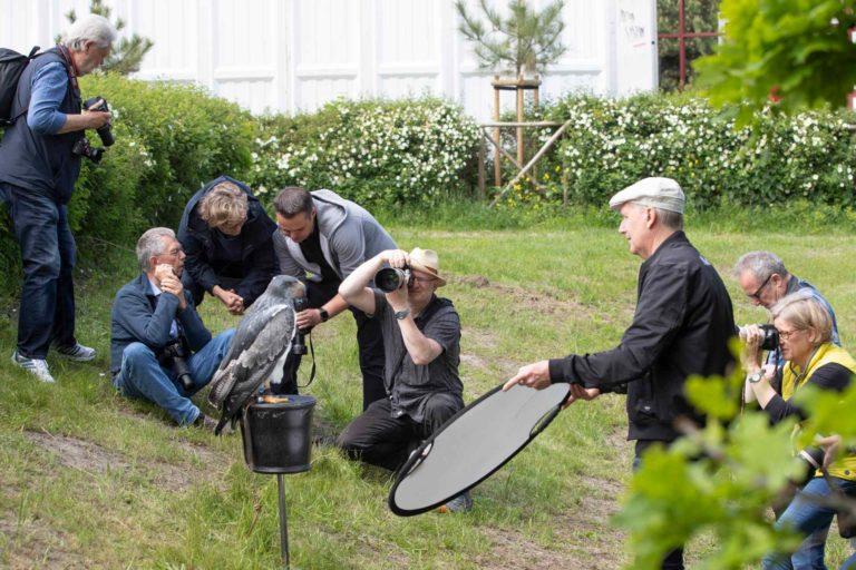 Fotografen beim Umweltfestival Zingst - Die Herrscher der Lüfte
